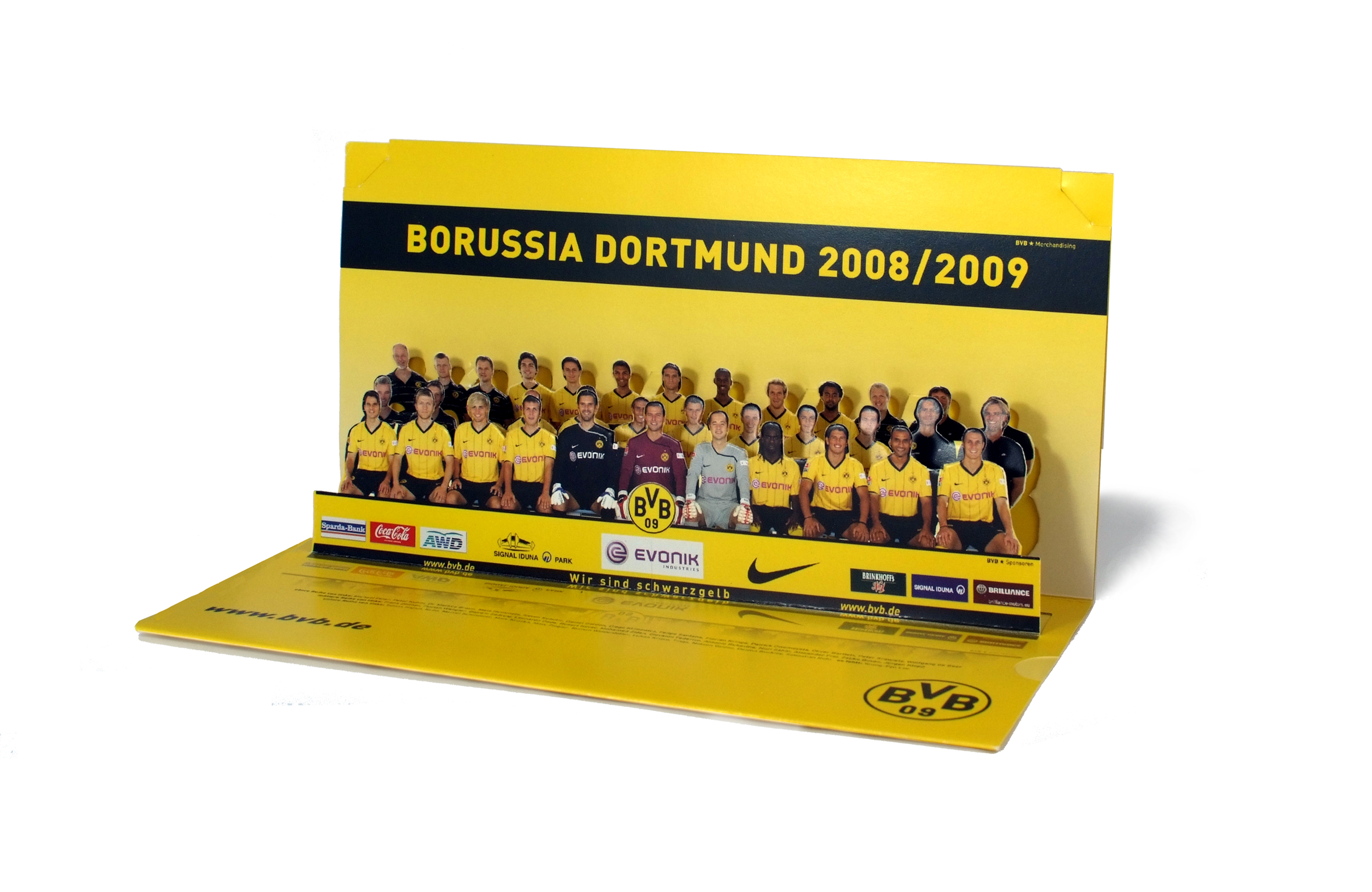 bvb team 2008
