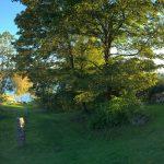 Schwedische Landschaft bei Frägsta Kulturgård